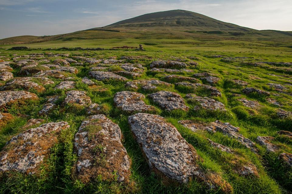 Exposed limestone pavement in the Wild Ingleborough project site (Andrew Parkinson/WWF-UK/PA)