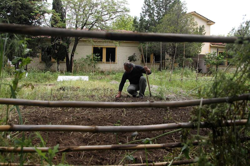 An urban farmer clears land to be used for planting crops to help residents hit by the country's financial crisis, in the former military camp Karatasiou, in the Northern Greek city of Thessaloniki, on Sunday, April 27, 2014. Volunteer residents are being encouraged to utilize many suburban areas left vacant amidst a drop in real estate prices, to grow crops aimed at helping people hit by the country's financial crisis. (AP Photo/Nikolas Giakoumidis)