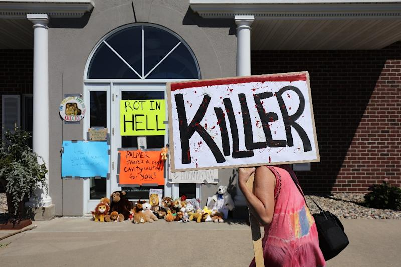 Protesters call attention to the alleged poaching of Cecil the lion, in the parking lot of Dr. Walter Palmer's River Bluff Dental Clinic on July 29, 2015 in Bloomington, Minnesota (AFP Photo/Adam Bettcher)