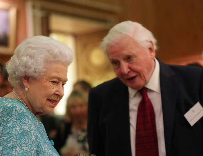 Sir David, pictured here with the Queen, believes the Brexit facts weren't presented before the vote (Picture: PA)