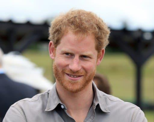Le prince Harry - Clint Hughes, POOL/AFP/Archives