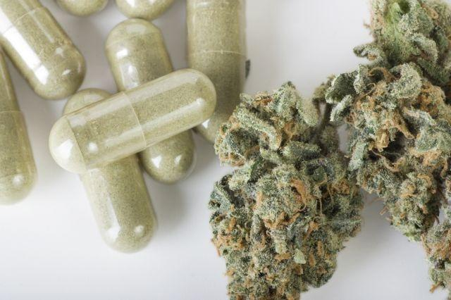 Nation's Pediatricians Warn of Rising Risks to Youths From Loosening Marijuana Laws