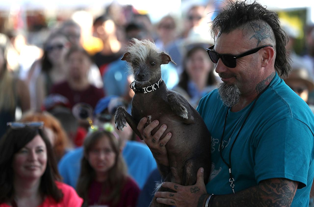 <p>Jon Adler of Davis, California, holds his mixed breed dog named Icky during the 2017 World's Ugliest Dog contest at the Sonoma-Marin Fair on June 23, 2017 in Petaluma, Calif. (Photo: Justin Sullivan/Getty Images) </p>