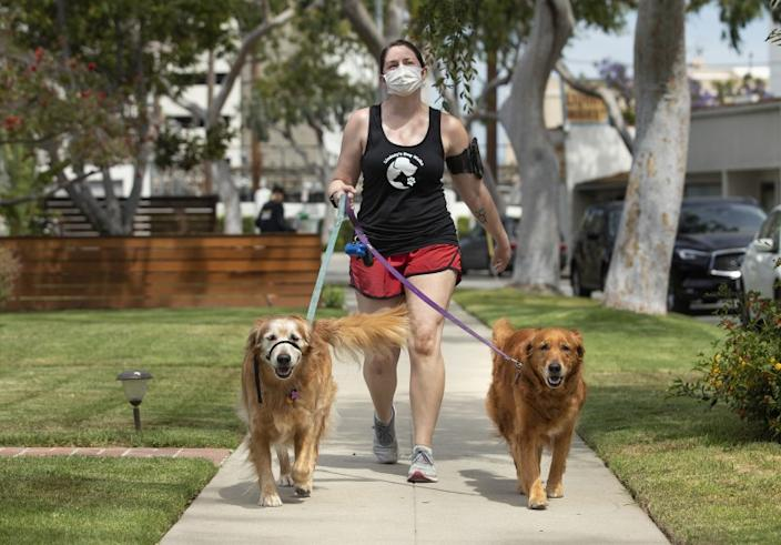 "Lindsay Rojas, 28, owner of Lindsay's Dog Walks, strolls with Nikki and Gomez, golden retriever siblings, along Keystone Avenue in Culver City. During the COVID-19 pandemic, experts warn that canines should not interact with dogs outside their immediate family. <span class=""copyright"">(Mel Melcon / Los Angeles Times)</span>"