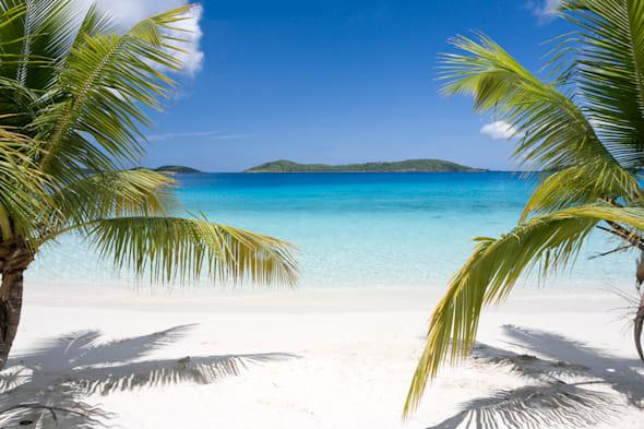 Tropical beach with palm trees and blue sky in Caribbean.