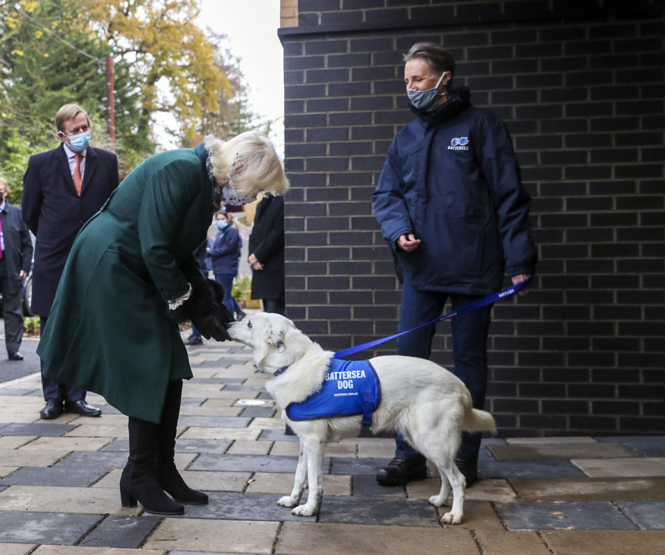 WINDSOR, ENGLAND - DECEMBER 09: Camilla, Duchess of Cornwall meets residents and staff as she visits the Battersea Dogs and Cats Home to open the new kennels and thank the centre's staff and supporters on December 9, 2020 in Windsor, United Kingdom. (Photo by Steve Parsons - WPA Pool/Getty Images)