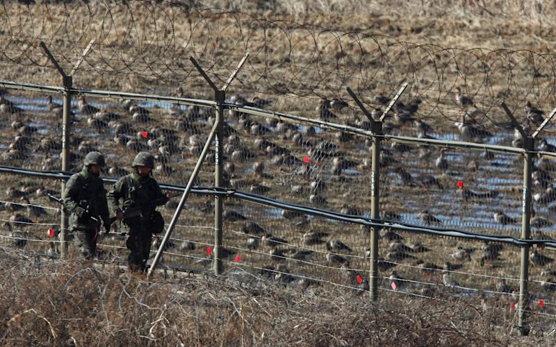 A North Korean defector was found to have an 'enormous number of parasites' in his body - REUTERS