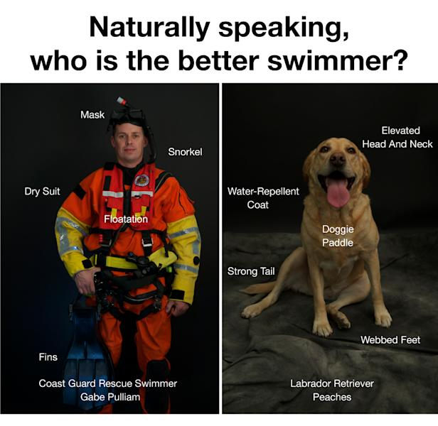 This image provided by Pamela J. Boehland shows public service poster created by the U.S. Coast Guard advising swimmers not to attempt to rescue their dogs who get swept away into surf. Experts say the average dog is a better swimmer than the average human. (AP Photo/Pamela J. Boehland)