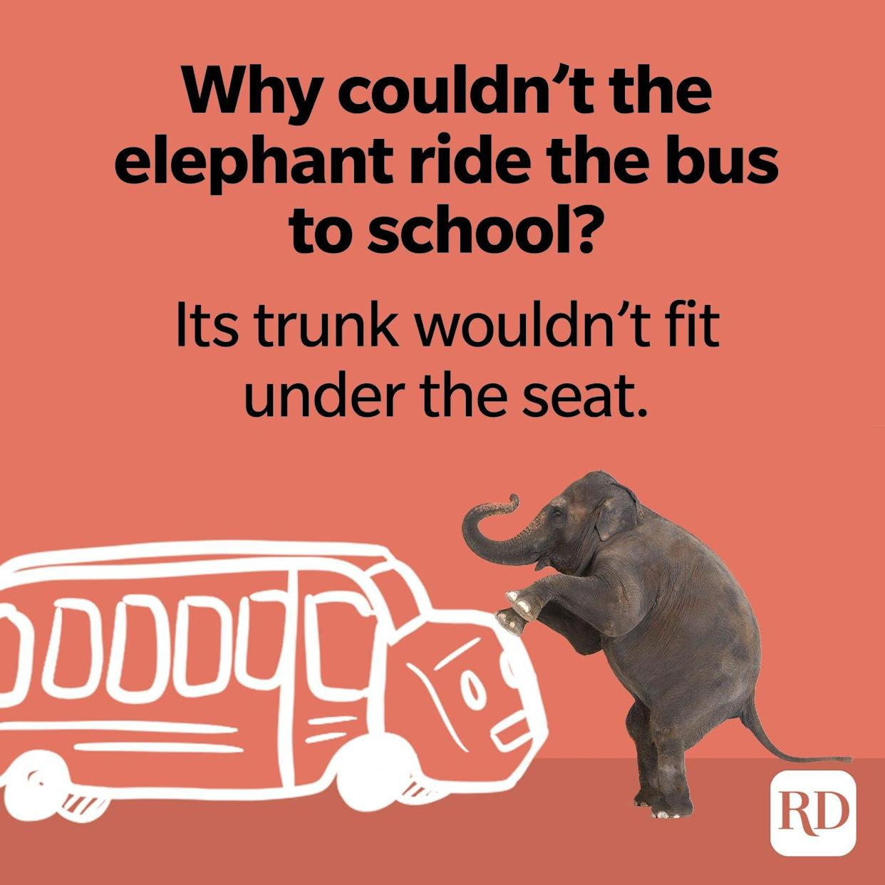 16. Why couldn't the elephant ride the bus to school? Its trunk wouldn't fit under the seat.