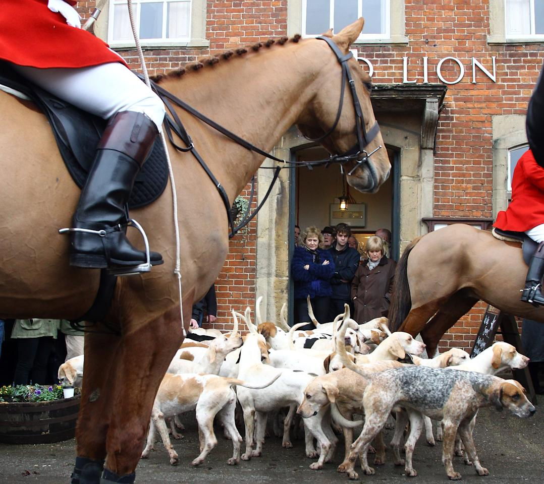 "LACOCK, UNITED KINGDOM - DECEMBER 26:  Riders with the Avon Vale Hunt and hunt supporters gather outside the Red Lion public house for their traditional Boxing Day hunt, on December 26, 2011 in Lacock, England. As hundreds of hunts gathered today for their traditional Boxing Day meets, Agriculture Minister Jim Paice has said the Hunting Act ""simply doesn't work"" and added that there should be a vote on whether to repeal the act when there was ""time in the parliamentary calendar"".  (Photo by Matt Cardy/Getty Images)"