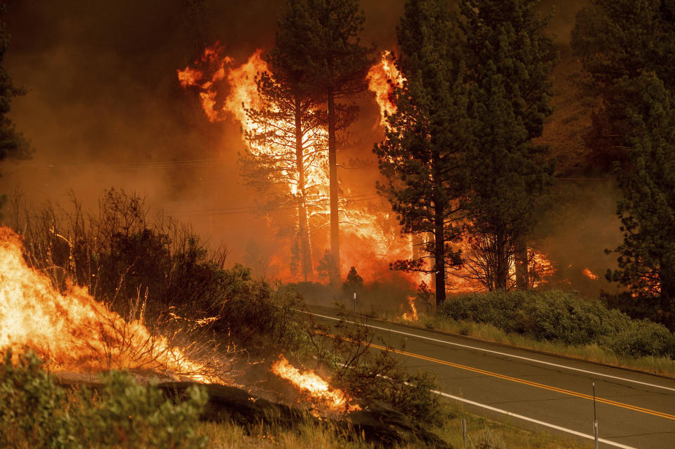 The Tamarack Fire burns in the Markleeville community of Alpine County, California, on July 17, 2021. / Credit: Noah Berger/AP