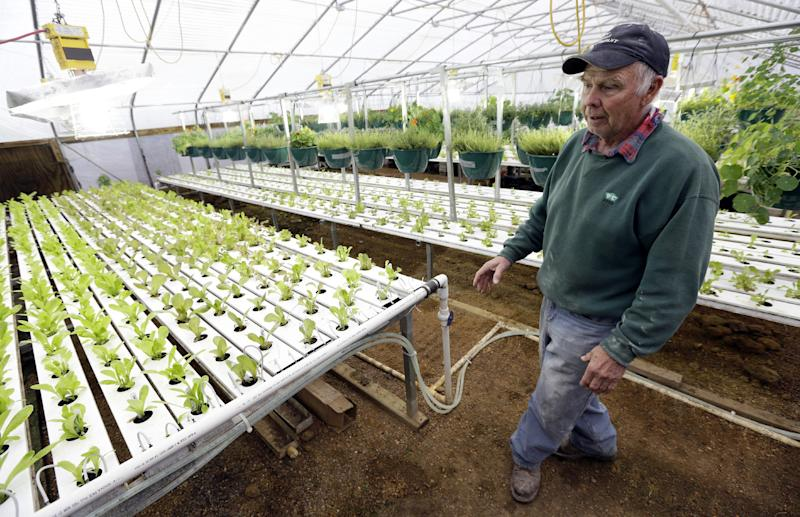 In this Nov. 21, 2013 photo, Earl Hafner talks about growing vegetables in his aquaponics greenhouse on his farm, near Panora, Iowa. Programs have been set up in many states to connect young farmers who want to get into agriculture with aging farmers to promote transition planning. Hafner is passing his 2,000-acre Early Morning Harvest farm to his 45-year-old son, Jeff. (AP Photo/Charlie Neibergall)