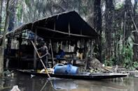 Ovwiroro paddles out every day to collect the bounty from his trees (AFP/Pius Utomi EKPEI)