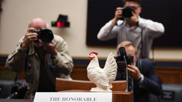 PHOTO: Photographers take a picture of a chicken placed on the empty seat for U.S. Attorney General Bill Barr in the House Judiciary Committee room on Capitol Hill in Washington, D.C., May 2, 2019. (Jim Watson/AFP/Getty Images)