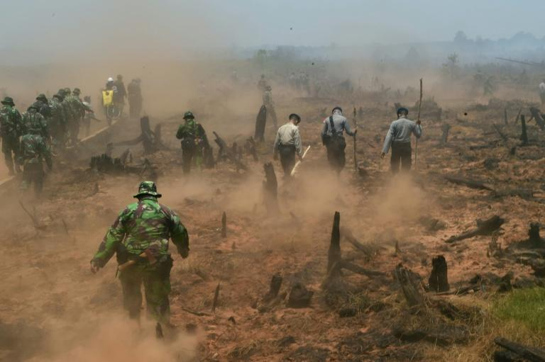 Indonesian firefighters backed by police and military troops fight fires in Southern Kalimantan province on Borneo island on September 23, 2015