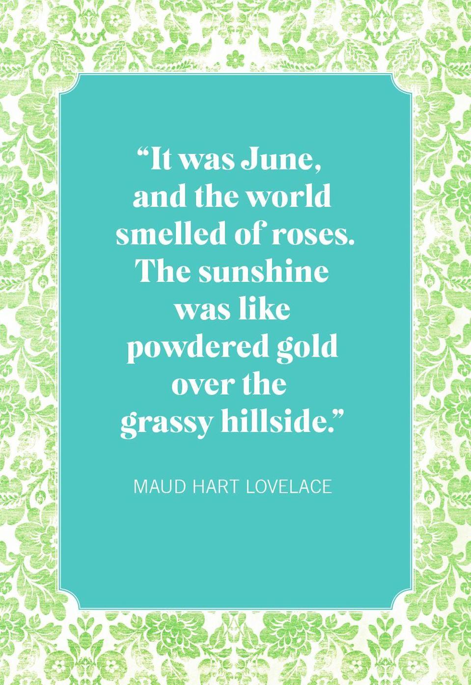 """<p>""""It was June, and the world smelled of roses. The sunshine was like powdered gold over the grassy hillside.""""</p>"""