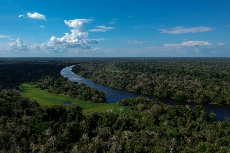 President-elect Jair Bolsonaro, a far-right champion of agribusiness who has threatened to pull Brazil from the Paris climate accord, issued a series of campaign pledges that left many fearing for the future of the Amazon