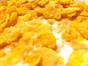 <p>Breakfast cereal is a touchy subject in the city of Columbus, OH. Stores apparently cannot sell Corn Flakes on Sundays here, so stock up ahead of time or you might just have to go with Frosted Flakes instead.</p>