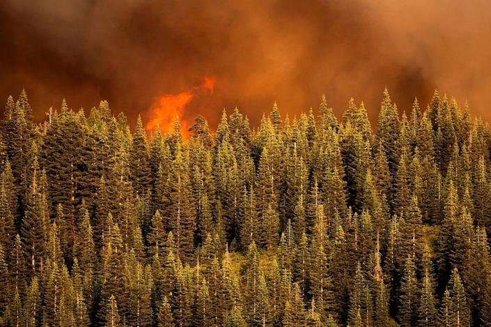 Flames from the Dixie Fire crest a ridge in Lassen National Forest, Calif., near Jonesville on Monday, July 26, 2021.