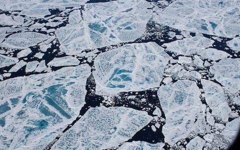 The sea ice melts when it reaches waters off Greenland, dumping vast amounts of microplastic in the water - Credit: Stefanie Arndt