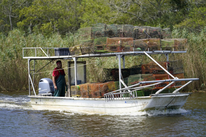 Jule Chaisson motors his boat to the dock after pulling some of his crab traps from Bayou Dularge in anticipation of Hurricane Delta, expected to arrive along the Gulf Coast later this week, in Theriot, La., Wednesday, Oct. 7, 2020. He said he pulled around 1,000 traps over the last three days. (AP Photo/Gerald Herbert)