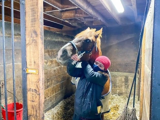 Sophie Barbeau-O'Connor wears a mask as she cares for a horse at the Venturing Hill farm in western Quebec. The farm has been dealing with an outbreak of another virus, one that's often fatal in horses.
