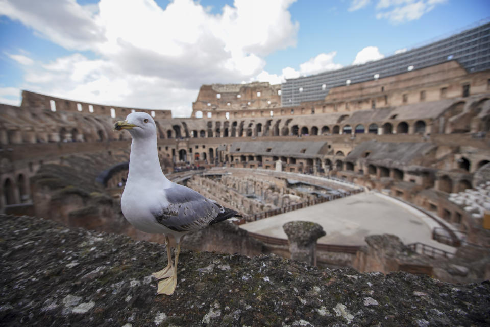 A view of the Colosseum, in Rome, Saturday, March 7, 2020. With the coronavirus emergency deepening in Europe, Italy, a focal point in the contagion, risks falling back into recession as foreign tourists are spooked from visiting its cultural treasures and the global market shrinks for prized artisanal products, from fashion to design. (AP Photo/Andrew Medichini)