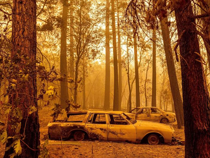 A scorched car sits in the forest.