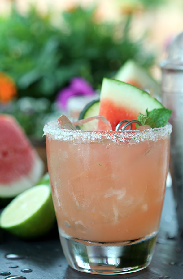 """<p>No matter what time of year it is, you can get all the tastes of summer with this fresh, flavorful cocktail.</p><p><strong>Get the recipe at <a href=""""https://www.creative-culinary.com/firecracker-watermelon-lime-cucumber-cocktail-recipe/"""" rel=""""nofollow noopener"""" target=""""_blank"""" data-ylk=""""slk:Creative Culinary"""" class=""""link rapid-noclick-resp"""">Creative Culinary</a>.</strong></p><p><a class=""""link rapid-noclick-resp"""" href=""""https://www.amazon.com/Elite-Cocktail-Shaker-Bartender-BARILLIO/dp/B01L6R2O0O/?tag=syn-yahoo-20&ascsubtag=%5Bartid%7C10050.g.30433150%5Bsrc%7Cyahoo-us"""" rel=""""nofollow noopener"""" target=""""_blank"""" data-ylk=""""slk:SHOP BAR TOOLS"""">SHOP BAR TOOLS</a></p>"""