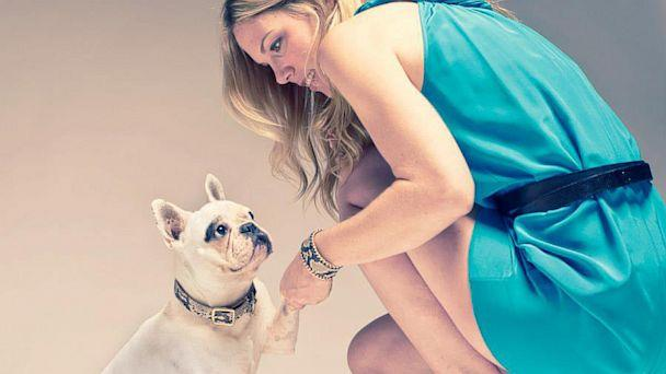 Haute Couture for Dogs