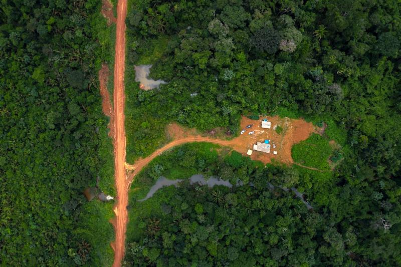 Since 2010, the area of Brazilian rainforest planted with soya -- which is used to feed animals sold for meat -- increased 45 percent (AFP Photo/Mauro Pimentel)