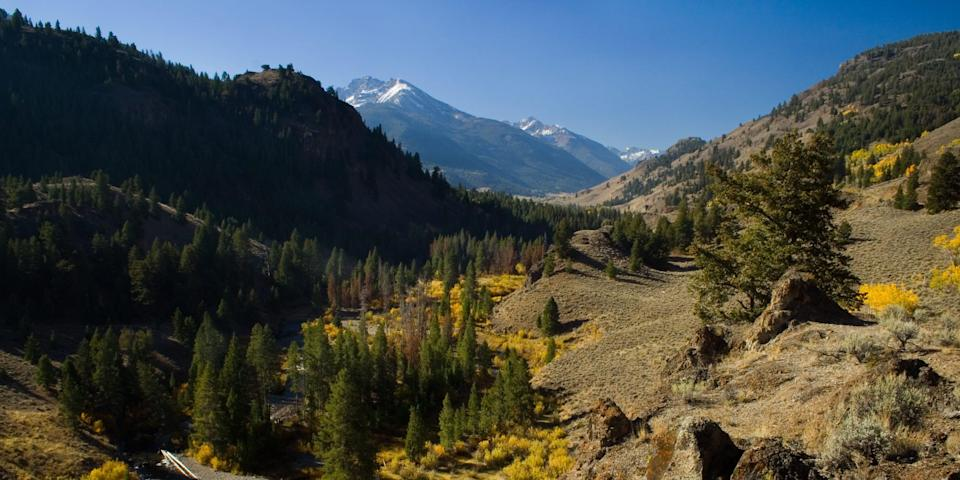 East fork of the Salmon River near the Sawtooth National Recreation Area in Idaho. File photo.