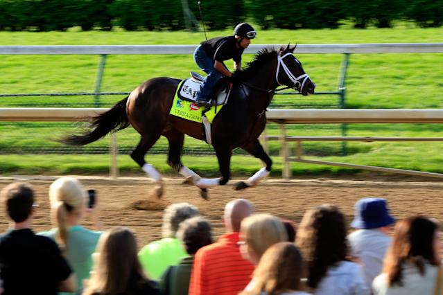 LOUISVILLE, KY - MAY 02: Verrazano trains on the track in preparation for the 2013 Kentucky Derby at Churchill Downs on May 2, 2013 in Louisville, Kentucky. (Photo by Jamie Squire/Getty Images)