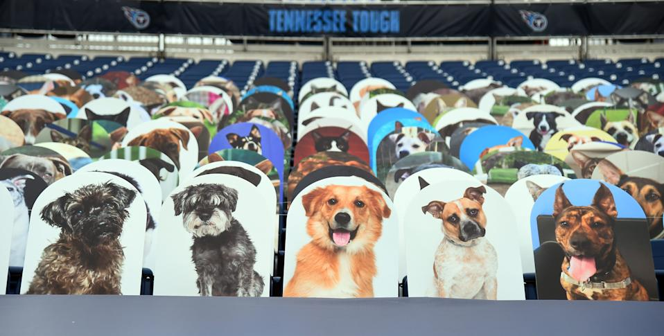 View of a section of dogs and cats cutouts in the north end zone before a game between the Tennessee Titans against the Houston Texans at Nissan Stadium.