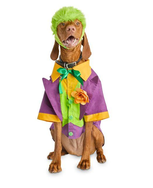 "Get this <a href=""https://fave.co/2GWNVLH"" target=""_blank"" rel=""noopener noreferrer"">Bootique DC Joker Dog Costume for $8</a> (normally $12) at Petco. It's available in sizes XS-XL and features a green wig."