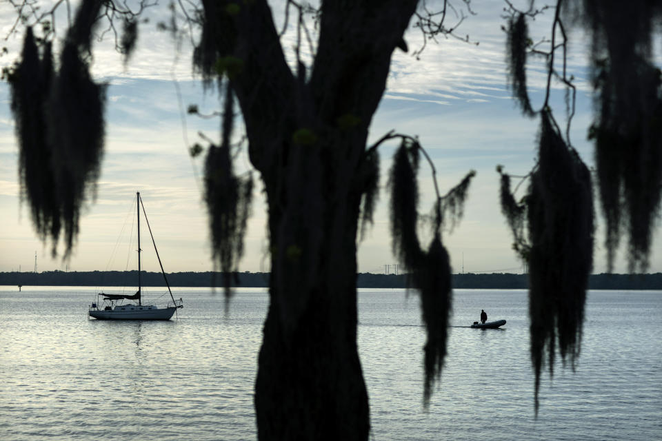 Spanish moss hangs from a tree along the St. Johns River in Palatka, Fla., Thursday, April 15, 2021. After months in a prison cell, Warren Williams longed to fish the St. Johns again. He looked forward to spending days outdoors in his landscaping job, and to writing poems and music in his free time. (AP Photo/David Goldman)