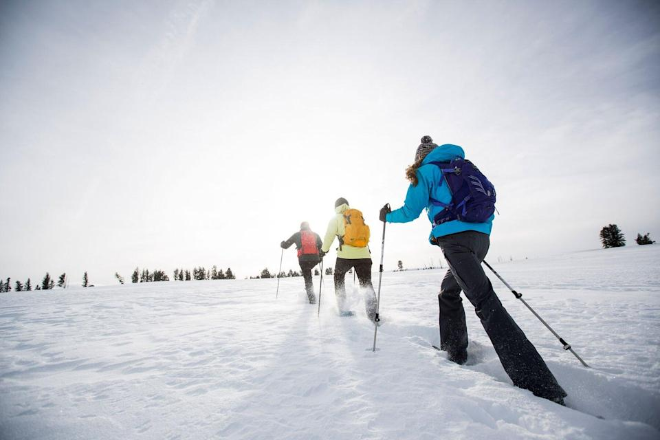 Group of three people snowshoeing