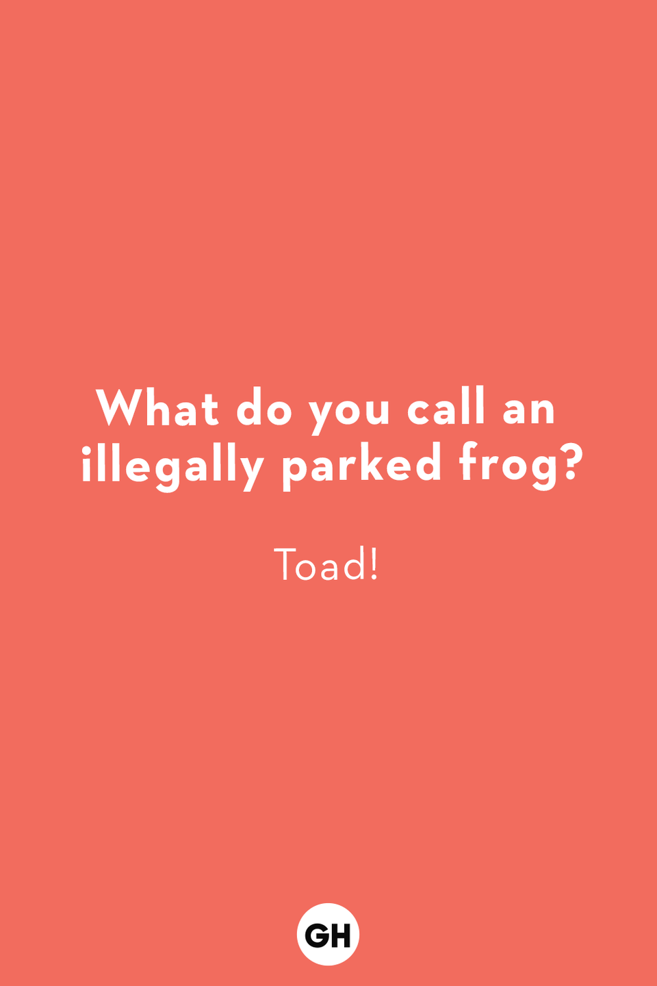 <p>Toad!</p>