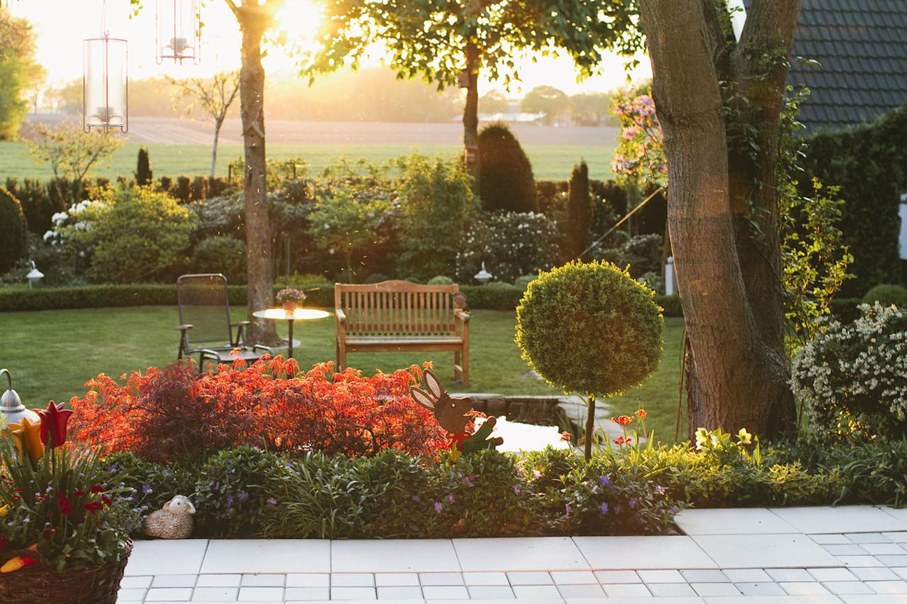 13 garden choices professional landscapers wish we\'d stop making