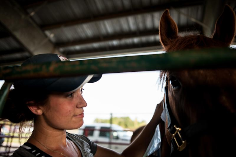 Maggie Olthaus, a vet tech from Columbus, Ohio, pets a horse at Ford Park. (Joseph Rushmore for HuffPost)