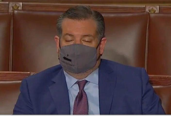 <p>Ted Cruz busted for falling asleep in Biden's joint session</p> (C-SPAN)