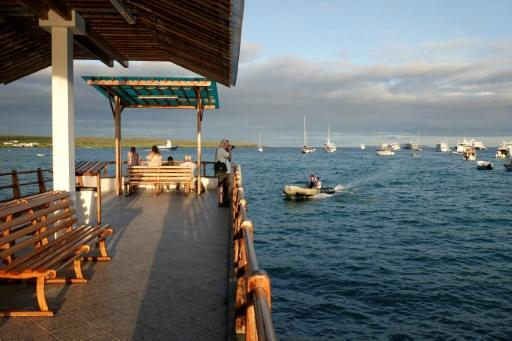 The Charles Darwin Foundation, which has been operating on the Galapagos islands for 60 years, had to shelve 20 research programs