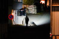 Man kills several people in Norway in bow and arrow attacks, in Kongsberg