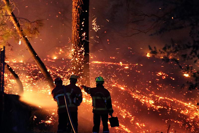 Firefighters battled a large fire at Chiberta forest in Anglet, southwestern France on Thursday: AP