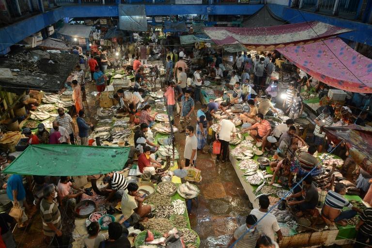 People shop at a fish market in Kolkata after the state government in India's West Bengal eased lockdown restrictions