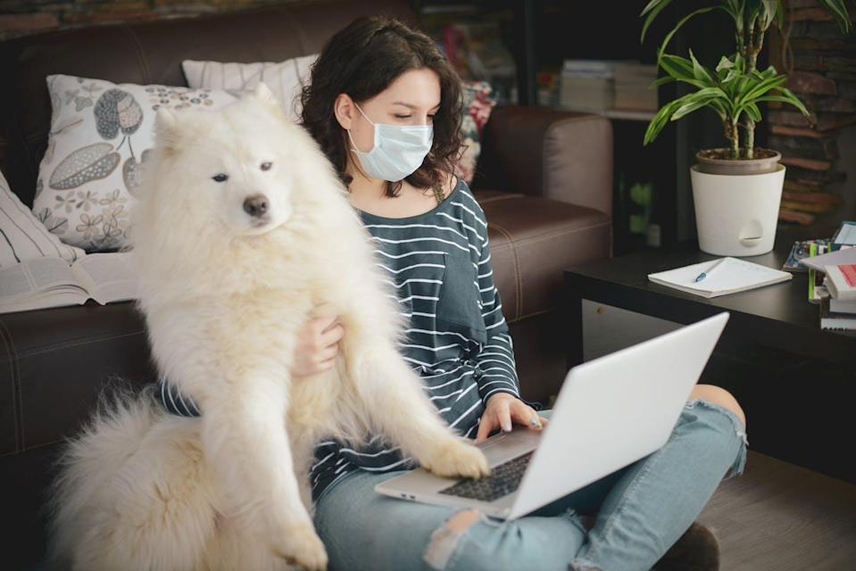"<span class=""caption"">COVID-19 has caused colleges to spend more to cope with the pandemic. </span> <span class=""attribution""><a class=""link rapid-noclick-resp"" href=""https://www.gettyimages.com/detail/photo/beautiful-young-woman-working-at-home-with-dog-royalty-free-image/1215354586?adppopup=true"" rel=""nofollow noopener"" target=""_blank"" data-ylk=""slk:elenaleonova/GettyImages"">elenaleonova/GettyImages</a></span>"