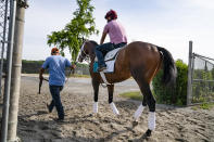 Belmont Stakes entrant Rombauer is led towards the main track for a training run ahead of the 153rd running of the Belmont Stakes horse race, Wednesday, June 2, 2021, at Belmont Park in Elmont, N.Y. (AP Photo/John Minchillo)
