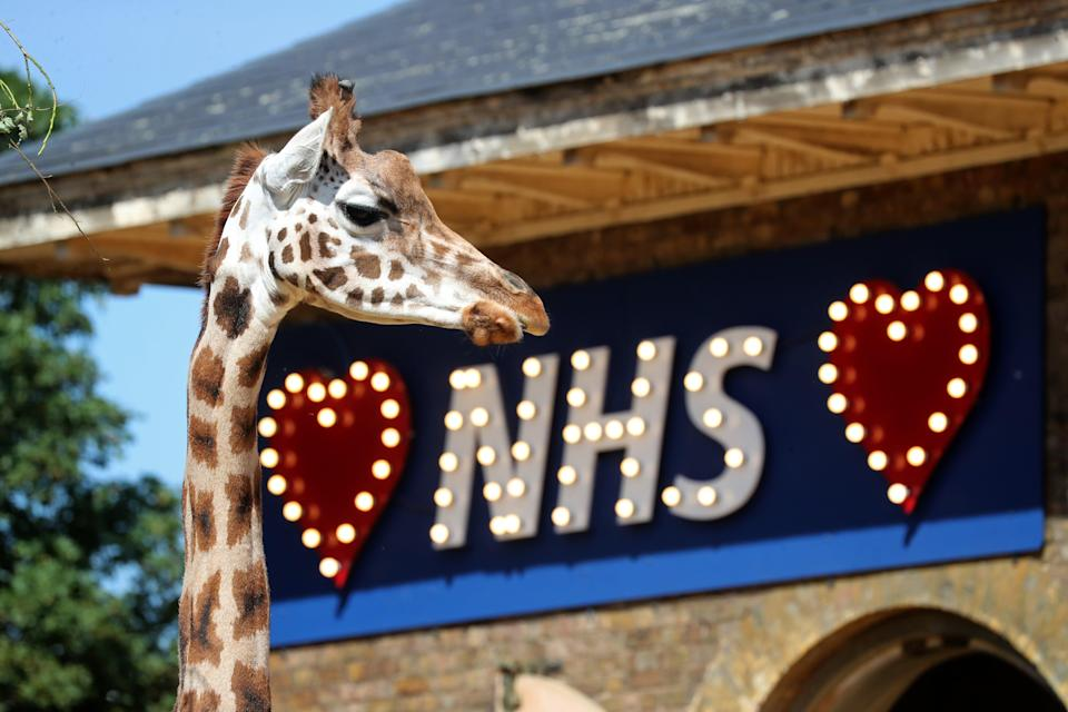<p>The sign was hung on the outside of the giraffe house during lockdown</p> (Getty Images)