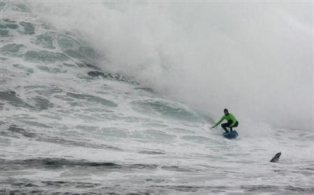 A seal pops up as South Africa's Grant 'Twiggy' Baker rides a wave to win the 2008 Big Wave Africa surfing event held at Dungeons