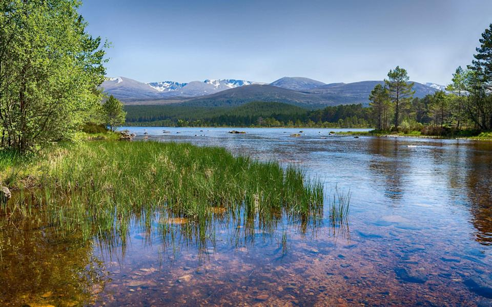 The Cairngorms is a true mountain wilderness - Lee Gillion/Getty